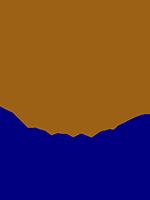 International Institute for Industrial Environmental Economics